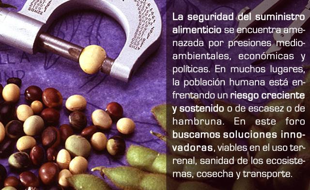 food-security-640x392
