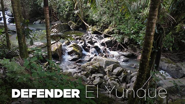 DEFENDER-el-Yunque-640x360